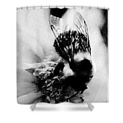 Little Bumble Bee Working For Dinner Shower Curtain