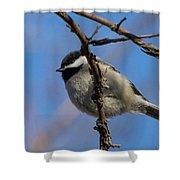 Little Chickadee Shower Curtain