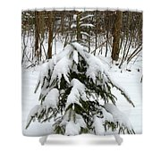 Little Christmas Tree Shower Curtain