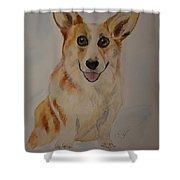 Little Corgi Shower Curtain