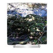Little Creek Shower Curtain