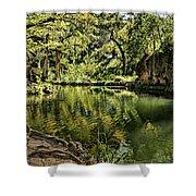 Little Cypress Creek Shower Curtain