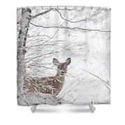 Little Doe In Snow Shower Curtain
