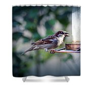 Little Friend Visitor Shower Curtain