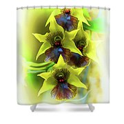 Little Green Apple Orchid On White Shower Curtain