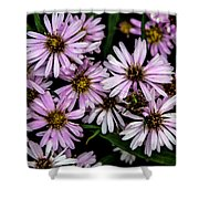 Little Green Bug Among The Flowers Shower Curtain