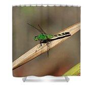 Little Green Friend Shower Curtain