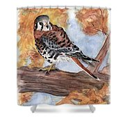 Little Guardian Shower Curtain