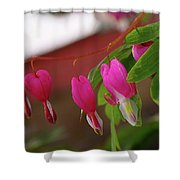 Little Hearts On A Vine  Shower Curtain
