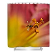 Little Hoverfly Shower Curtain