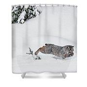 Little Hunter Shower Curtain