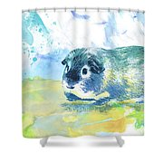 Little Lady Gwilwilith Shower Curtain
