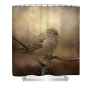 Little Lost Bird Shower Curtain