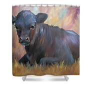 Little Moo  Angus Calf Painting Southwest Art Shower Curtain
