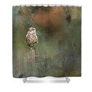 Little Owl On A Fence Shower Curtain
