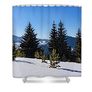 Little Pine Forest - Impressions Of Mountains Shower Curtain