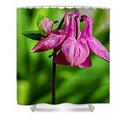 Little Pink Lamp Shower Curtain