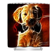 Little Puppy In Love Shower Curtain by Pamela Johnson