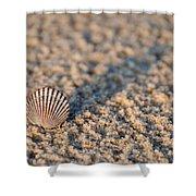 Little Seashell - Jersey Shore Shower Curtain