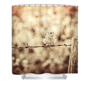 Little Sparrow Shower Curtain