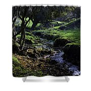 Little Stream Shower Curtain