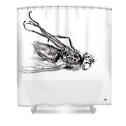little things too, senescence I2 Shower Curtain