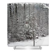 Little Tree Big Snow Shower Curtain