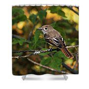 Little Tweet Shower Curtain