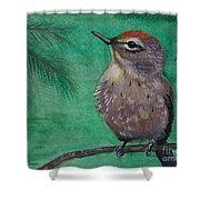 Little Warbler Shower Curtain