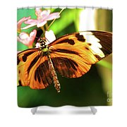 Little Wing Shower Curtain