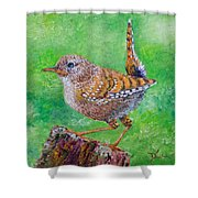 Little Wren Shower Curtain
