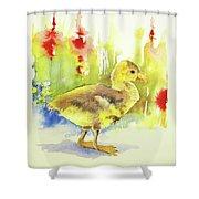 Little Yellow Duck Shower Curtain