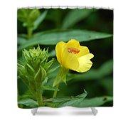Little Yellow Flower Shower Curtain