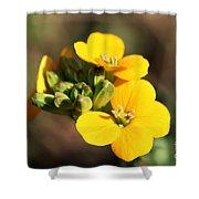 Little Yellow Flowers Shower Curtain