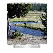 Live Dream Own Yellowstone Park Elk Herd Text Shower Curtain