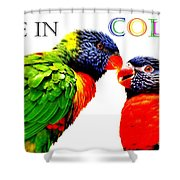 Live In Color Shower Curtain