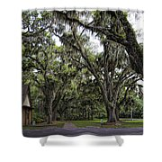 Live Oak And Spanis Moss Landscape Shower Curtain