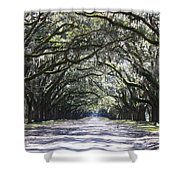 Live Oak Lane In Savannah Shower Curtain