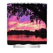Live Oak Sunset Shower Curtain