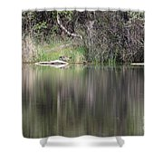 Living On The Pond Shower Curtain