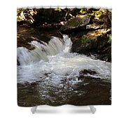 Living Streams Shower Curtain