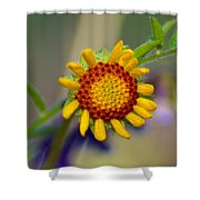 Living Sunshine Shower Curtain