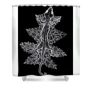 Lizard And Leaf Shower Curtain