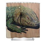 Lizard Art Work Shower Curtain