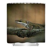 Lizard Deception Wildlife Art Shower Curtain