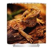 Lizard - Id 16217-202744-5164 Shower Curtain