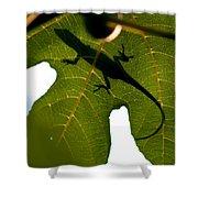 Lizard On A Fig Leaf Shower Curtain