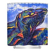 Lizard In The Desert 2 Shower Curtain