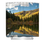 Lizard Lake Shower Curtain
