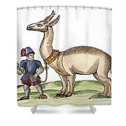 Llama, 1607 Shower Curtain